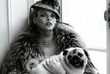pug love / by Cherona Micklish-Pyles