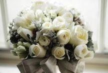 Flower --->