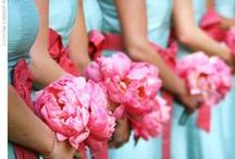 Wedding :: Pink and Blue