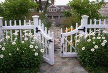 For My Garden / by Lisa Baer