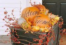 Falling For Autumn / by Jodi Sutton