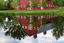 Barns / For my lifelong love of barns! / by Lisa Baer