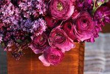 Wedding Flowers / by Ara Cho