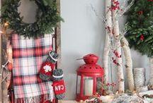 Christmas Inpiration / Decorating & Gifts