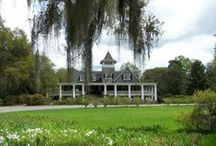 South Carolina / Travel destinations and exclusives in the Palmetto State / by The Group Travel Leader
