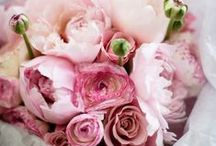 Floral / Bouquets  / by Brittany Fox