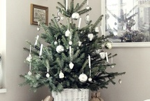 White Christmas Decorating / by Jennifer Decorates
