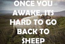 Consciousness: Wake up everybody!