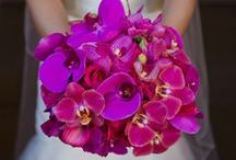 Radiant Orchid Floral Design / by Fly Me To The Moon Florists