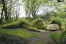 Garden Inspiration & Design / garden art & garden ideas