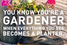 Garden funnies ... / you gotta laugh