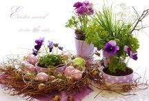Spring has sprung :0)