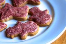 Autoimmune Protocol Recipes / Grain, Nut, Egg, Dairy, Seed, Sugar, and Nightshade Free Recipes