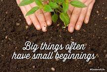 Gardening Greats / Gardening with Garden of Life.