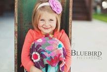 Bluebird Pictures / Www.bluebpics.com / by Bluebird Pictures
