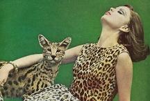 Fashion: Leopard / by Roberta Pasciuti