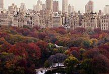 seasons: fall. / by Olivia Rogers