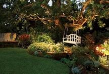 My dream garden / by Donna Comi