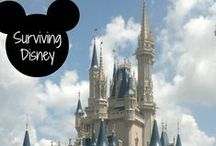 Disney World - The Happiest Place on Earth! / Everything you need for your Disney vacation.  Tips and tricks for saving money at Disney World...enjoying the most at The Magic Kingdom, Epcot, Hollywood Studios, and Animal Kingdom.  All things Mickey Mouse, Disney Princesses, and more! Orlando, Florida