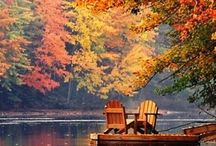 Autumn / Warm things for autumn / by Christine Haden