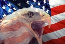AMERICA / All American! / by Christine Haden
