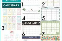 Printables - Organize / by Carrie