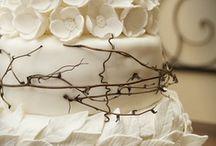 Wedding/Party Ideas / For 'the wedding I never had' aka: 5 year vowel renewal <3  / by Erika Lynn
