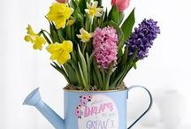 Spring Into Spring / Refreshing spring floral to get the pep back into your step following a long winter!