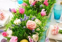 Bright Easter Celebrations / Hop to it! Make your Easter celebration unforgettable with fun decor and place settings.