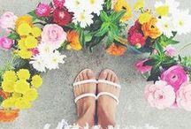 Summer Life / Here's to eternal summer.