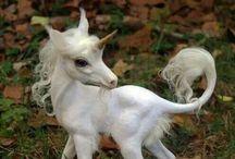Unicorns / Cool unicorns / by Nessa
