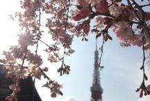 #JAPAN / My travel and daily life posts / photos about my beloved Japan ♡