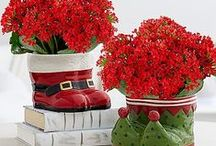 Holiday Home Décor / One of the best ways to decorate your home for Christmas is to incorporate fresh fragrant evergreens and vibrant blooms. Beautiful Christmas décor inspiration for the home—inside and out. / by ProFlowers