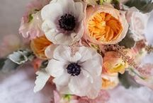 Going to the Chapel / Floral inspiration for your dream wedding.