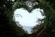 I Heart / Just that...I heart... / by Patty Stagg