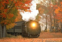 Train Train... / I hope to someday take a trip by train...this will be a fun board to build... / by Patty Stagg