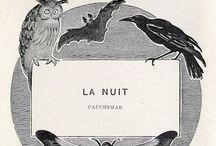 La Nuit / by Rebecca M.