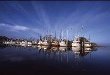 Apalachicola - <3 It! / by Debbie Mullin