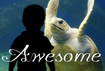 Awesome / Beauty is awesome.