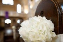 Wedding Plans / by Mandi Jordan