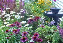 Outdoor Ideas / Inspiring ideas for outdoor living spaces.