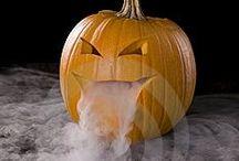 Halloween / by Kate Holbrook