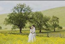 My wedding photography / Creative, alternative and modern wedding photography by Inta Photography.
