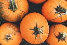 Autumn Favorites / Cozy fall favorites- recipes, decor, more. ~ http://www.savingsmania.com/ / by SavingsMania- Diane Schmidt