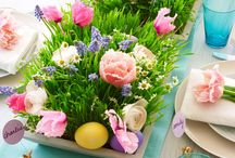Easter Dinner / From Easter dinner to decor and more, find it here!