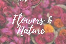 Flowers&Nature