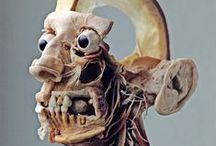 Dead and awesome / Death, Victorian mourning, morbid stuff, medical curiosities, taxidermy / by Mishahshah