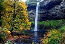 Oregon Bound! / by Leisa