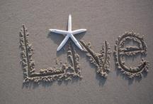 Beachin' Words / Sweet words that take me back to the beach! / by Robin DeLong-Makin
