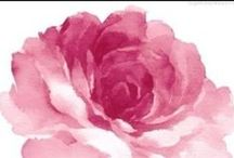 B R A N D I N G  / by Rose Cowger | Urban Rose Photo
